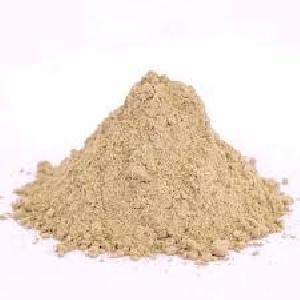 Spray Dried Fig Powder