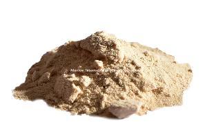 Spray Dried Pineapple Powder