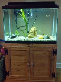 Fish Aquarium Stand
