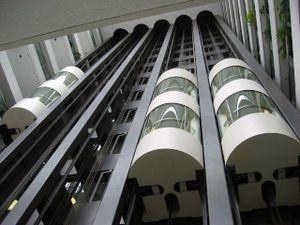 Capsule Lifts