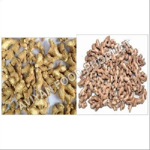 Dried Ginger(Snot)