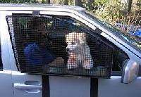 Pet Vehicle Window Barrier