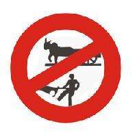 Bullock Carts Prohibited