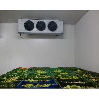 Vegetable Storage Cold Room