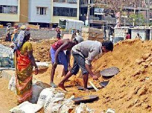 Construction Labour Consultancy