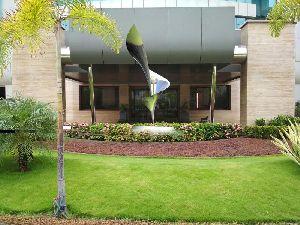 Plain Rhythmic Grow Sculpture