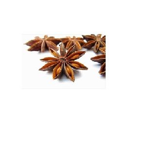Star Anise Seed