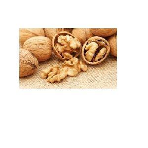 Walnut Nut