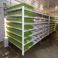 Easyfil Hydroponic Container System