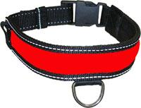Polybrite Dog Collars