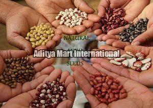 Natural Agro Seeds