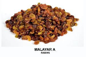 Malayar A Raisins