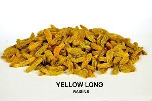 Yellow Long Raisins