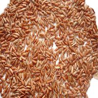 Pure Brown Rice