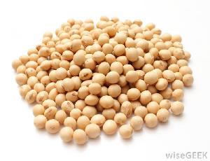 Soyabean
