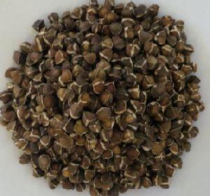 Pure Natural Moringa Seeds