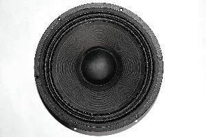 12 Inch 120 Watt Speaker