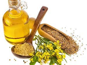 Shakambari Mustard Oil
