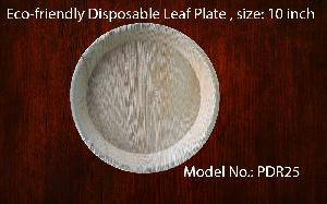Eco-friendly natural leaf plate