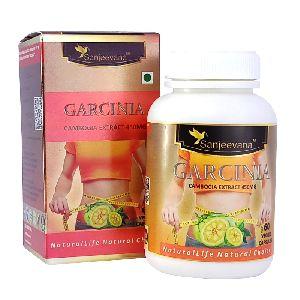 Garcinia Capsule 450mg