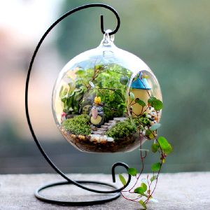 Terrariums Manufacturers Suppliers Exporters In India