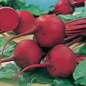Beet Root Seeds