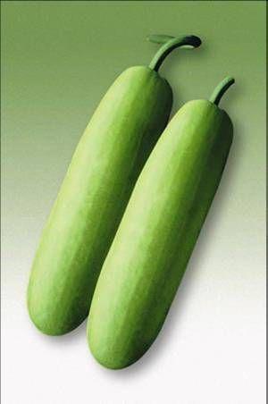 Shiv Vaman Bottle Gourd Seeds