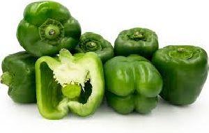 Fresh Green Bell Pepper