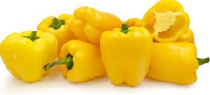 Fresh Yellow Bell Pepper
