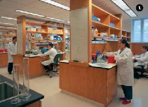 Laboratory Setup Consultancy Services