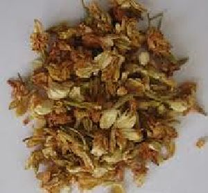 Dry Jasmine