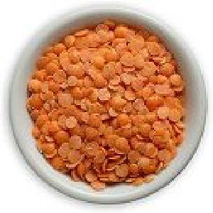 Food Grains & Cereals