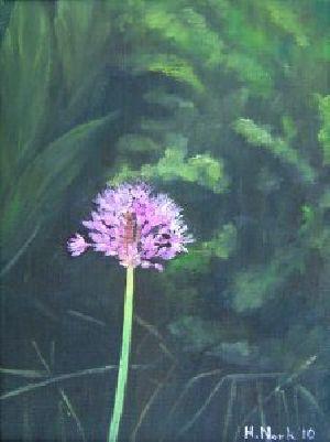 Allium Flower Painting