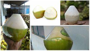 Trimmed Tender Coconut