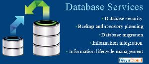 Customer Database Service