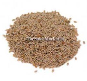 Psyllium Seed, Isabgol Seeds