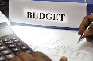 Budget Preparation Services