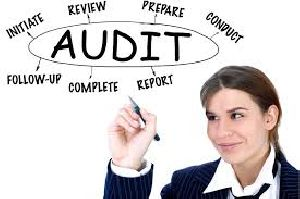 Charities & Not For Profit Organization Audit Services