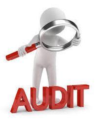 Statutory Audit of Society Service