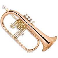 wind musical instrument