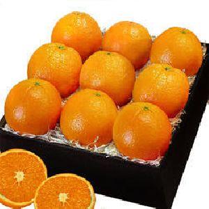 Fresh Oranges for sale
