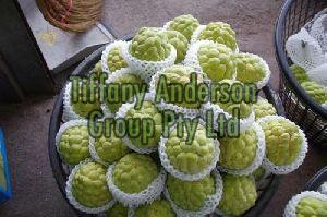Custard Apple,Fresh Custard Apple