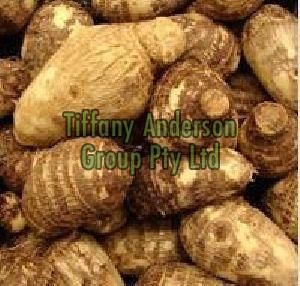 Fresh Colocasia Root for sale