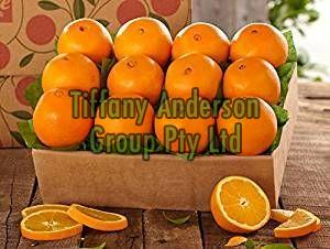Fresh Citrus Fruits, Fresh Mandarin Oranges, Valencia Oranges & Lemons High Quality.