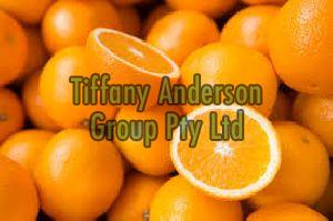 Fresh Oranges/Sweet and Natural Oranges/High Quality Fresh Navel and Valencia Oranges