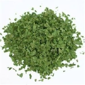 Freeze Dried Mint Leaves