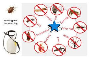 Pest Control Service In Dlf Phase 1 Gurugram