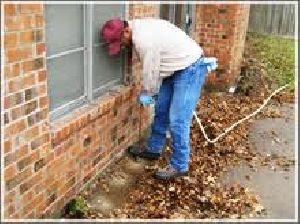 Termite Control Services In Garden Estate Gurugram