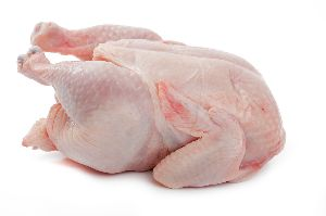 Chicken Breast, Grade A Halal Frozen Chicken Feet, Paws, Breast, Whole Chicken, Legs and Wings