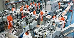 Food Processing Plants Fabrication Services
